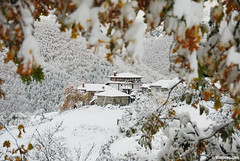 winter in Vrata village , Rodopi mountain, Bulgaria ,  ,  (.:: Maya ::.) Tags: winter mountain snow eye woods village maya bulgaria rodopi vrata  rhodope   mayaeyecom mayakarkalicheva  wwwmayaeyecom