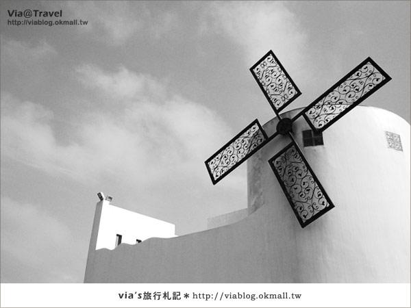 【桃園餐廳】桃園新屋地中海風~卡托米利庭園咖啡餐廳28