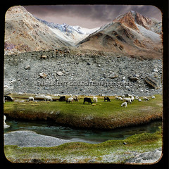 The Land of High Passes (designldg) Tags: travel india water clouds square photography freedom asia heaven atmosphere panasonic silence tibetan himalaya shanti breathtaking freetibet ladakh tibetanplateau  indiasong dmcfz18