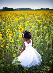 sunflowr sundays (-Teddy) Tags: field 35mm dress sunday mykid sunflowers sunflower canonlens 35l sunflowr exodusphoto canonef35mmf14usm 35mm14 5dmk2 canon5dmarkii