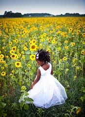 sunflowr sundays (-Teddy) Tags: field 35mm dress sunday mykid sunflowers sunflower canonlens 35l sunflowr exodusphoto canonef35mmf14usm 35mm14 5dmk2 canon5dmarkii