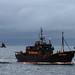 Sea Shepherd, Steve Irwin Southern Ocean Dec 2008