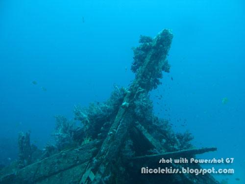 ship wreck 3