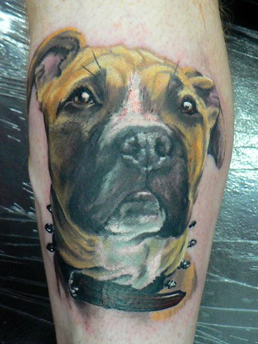 Dogs/Dog, Bulldog, Collie, Puppy - Chest Womens/Girls Tattoos, Free Tattoo