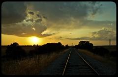 Otro día más de viaje se va... (InVa10) Tags: trees light sunset sky españa sun luz sol portugal field clouds train canon de tren atardecer eos spain arboles border via badajoz cielo nubes campo puesta frontera horizont horizonte inva 450d