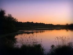 Evening Afterglow (Nature_Deb) Tags: pink blue trees sunset summer orange reflection nature water silhouette night landscape evening twilight fishing valentine grasses afterglow millspond