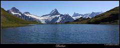 Bachsee (Finsty) Tags: mountain lake lago schweiz switzerland suisse first grindelwald svizzera montagna berneroberland wetterhorn finsteraarhorn bachsee fischerhorn oberlandbernese bachalp screckhorn