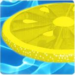 lemonslice