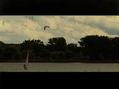 Wind Surfing (carrie120505) Tags: newyork paintshopped texturebylesbrumes