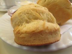 Bready scones