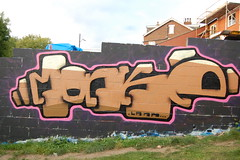 lank (pranged) Tags: pool rose swimming graffiti greg 26 leeds bank crew kens em ep bsa kus 2061 tsm tfa phuck lank phibs thk
