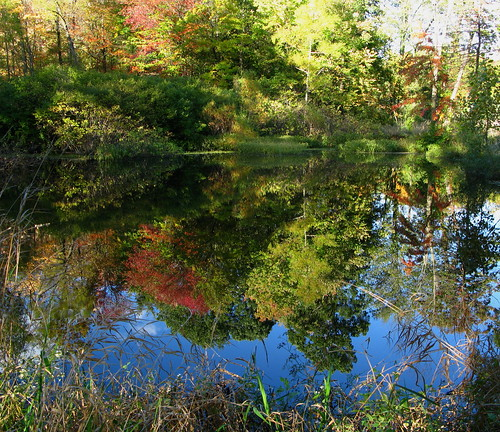 Autumn Pond flickr