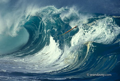 A surfboard is swallowed up by a huge wave at Waimea shorebreak, on the north shore of Oahu, Hawaii. (Sean Davey Photography) Tags: tube barrel curl tubing curling barreling seawaveenergyseaswellgreenpoweroceanpoweroceanenergyseawavewavesenergyoceanwavepicturesoceanswellpictureswaveoceanwavecurlcurlingwavepowerenergygreenpowergreenenergynaturegreen dangerousdangerperilousdangeroussurfhugewaveshugesurfbigwavesstormsurfstormwavespowerfulwavessurfboardwaimeashorebreaknorthshoreoahuhawaiiseandaveyseandaveyphotographyfinephotographyartphotographyfinea