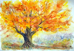 Watercolour..strong and proud in the autumn-life-glory... (Nadia Minic) Tags: autumn tree proud automne glory aquarelle herbst gloire watercolour colourful luxembourg arbre baum farbig feuilles color herbstlaub stolz fier lenningen mywinners diamondclassphotographer flickrdiamond artistictr