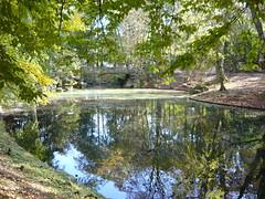 Aprs-midi d'automne (p.franche) Tags: automne lac bruxelles miroir parc reflets schaerbeek josaphat pfranche