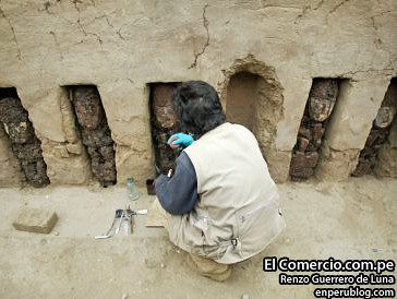 The 17 statues were found embedded in the wall