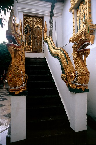 Dorados De Chihuahua