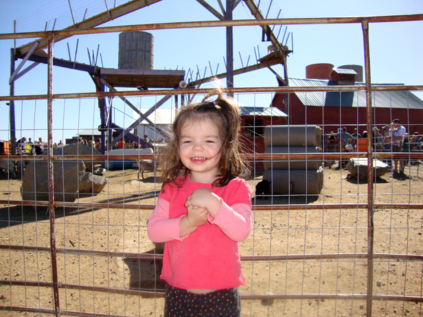 Jo & the farm animals