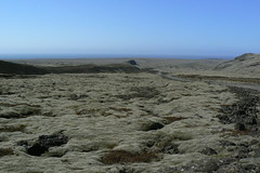 I can see the curve of the earth (Chris Bury) Tags: lava iceland moss rocks volcanic geological reykanes