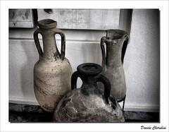 Antiche Anfore (Davide Cherubini) Tags: ancient terracotta jar pottery antico vaso cherubini anfora amphorae dressel dcherubini davidecherubini