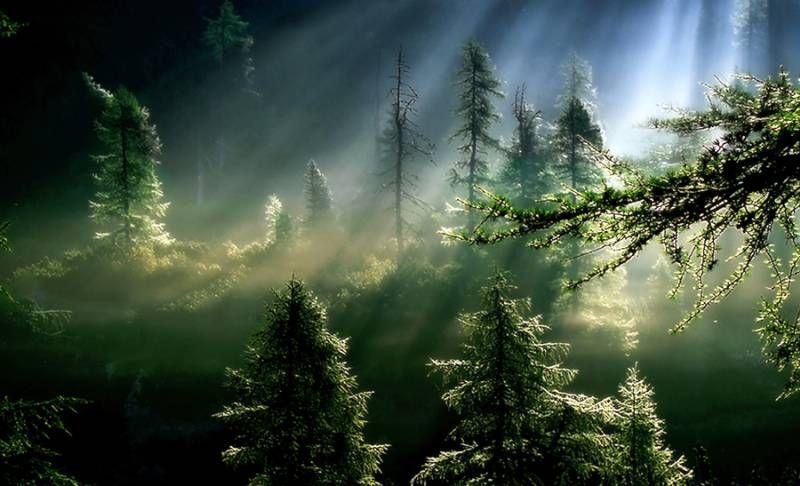 exceptional_nature_Funzug.com_12