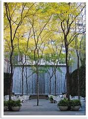 New York 2009 - Paley Park