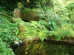 Fonte da Saudade,  em Iguape (SP)