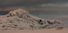 Mt. Bitihorn (1.607 meters) (NaustvikPhotography.com) Tags: winter snow mountains nature norway landscape hiking beitostlen winterwonderland jotunheimen bitihorn bei