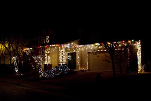 Christmas lights [332/365]