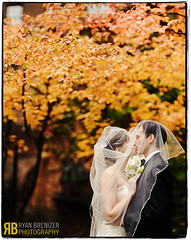 Feels Like Falling in Love (Ryan Brenizer) Tags: nyc newyorkcity wedding portrait love groom bride nikon kiss bokeh manhattan foliage unitarianchurch uppereastside 85mmf14d d700 bokehpanorama brenizermethod annaandtom