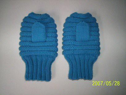 blue mittens 20070528