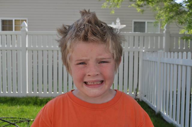 TS needs a haircut