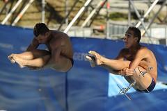 Troy Dumais e Kristian Ipsen (gongolo) Tags: roma sport diving piscina nuoto tuffo foroitalico trampolino sincro tuffatore troydumais medagliadargento trampolino3metrisincrouomini kristianipsen mondialidinuotofinaroma09