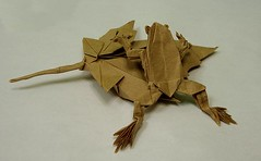 tree frog and maple leaf by robert j lang and brian chan respectively (飛竜) Tags: robert colors paper leaf maple origami brian frog chan lang