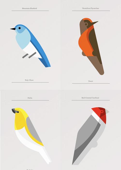 birds by Josh Brill