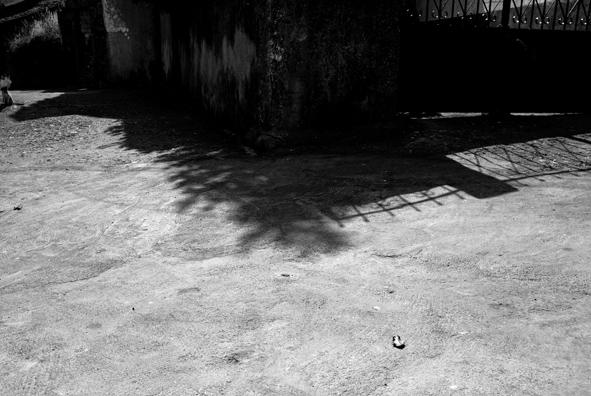 Sombras de Navasfrías