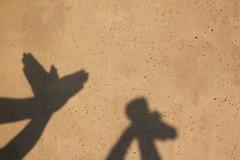 shadow play (virginhoney) Tags: trip vacation sunshine birds wall hands shadowplay egmond