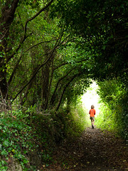 Fairy tale ((Erik)) Tags: trees light france nature girl fairytale outdoors photography woods brittany magic dream tunnel littlegirl dreamy lonely unreal drawn sprookje greentunnel specialpicture alemdagqualityonlyclub