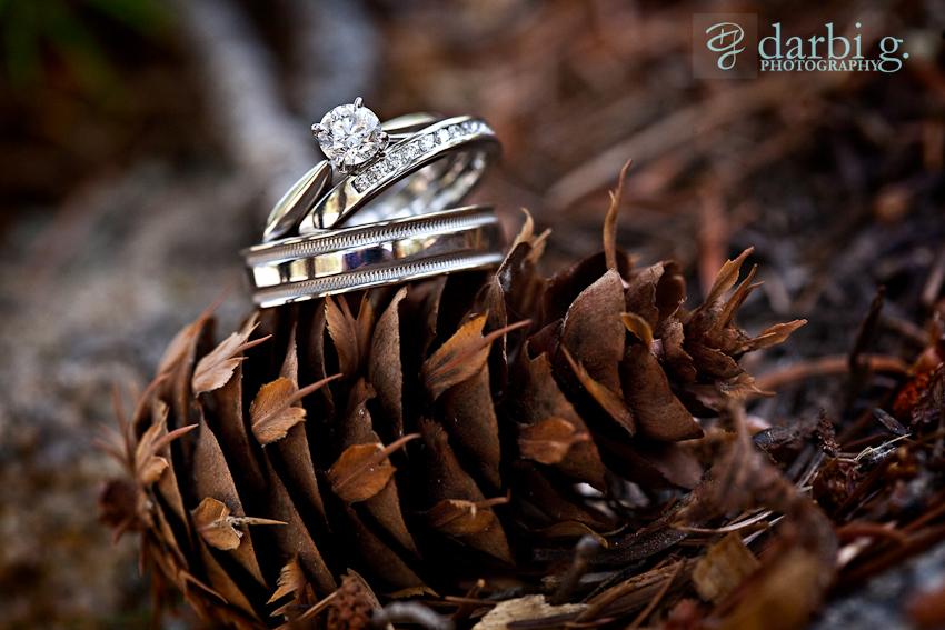 DarbiGPhotography-kansas city wedding photographer-CD-details110