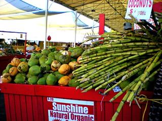 Coconuts & Sugar Canes