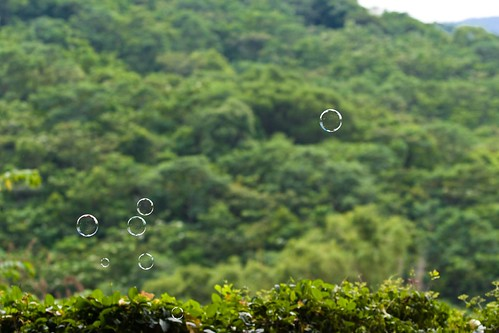 20090919-IMG_3184 by you.