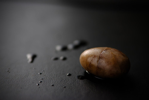 Wet pebble from the garden on black leather