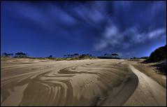 The Oregon Dunes (mnt_goat_76) Tags: ocean sky copyright nature oregon ilovenature sand nikon pacific dunes steve rollins hdr d700 mntgoat76