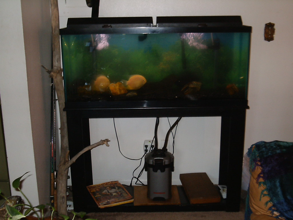 55 Gallon Aquarium $75