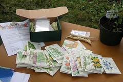 seed swap seeds from BI