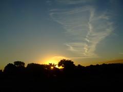 pôr-do-sol (valmello) Tags: light shadow sky cloud sun luz sol sombra céu nuvem desenho batatais