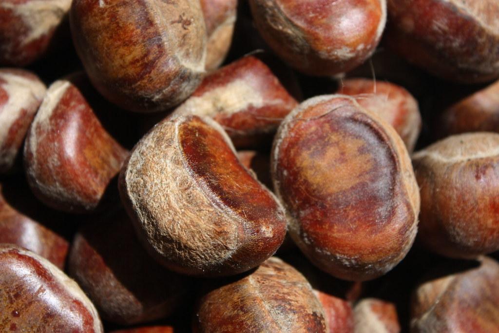 Berangan, sejenis kacang yang dipanggil buah.