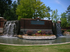 Cary NC Carolina Preserve Del Webb homes for sale-Linda Lohman