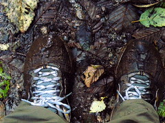 happy soul, muddy feet (Vida Morkunas (seawallrunner)) Tags: morning autumn fall beautiful forest reflections quiet bc fishermen cloudy walk britishcolumbia peaceful rainy northshore serene northvancouver cwall ricelake stilllake seymourdemoforest lowerseymourconservationarea lotsofleavesonthelake