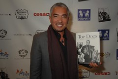 Cesar Millan and Top Dogs